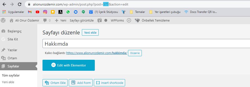 wordpress sayfa id'si nasıl bulunur